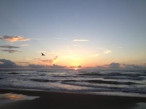 South Padre Island 8/12/13